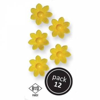 12 Marguerites en sucre jaune