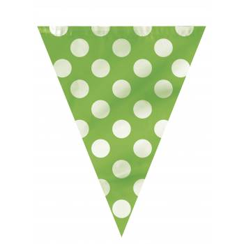 Guirlande fanions pois vert
