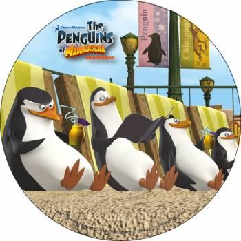 Photo comestible Pingouin de Madagascar 2