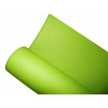 Nappe jetable non tissée vert anis