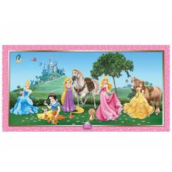 Décor pour mur Disney princesse
