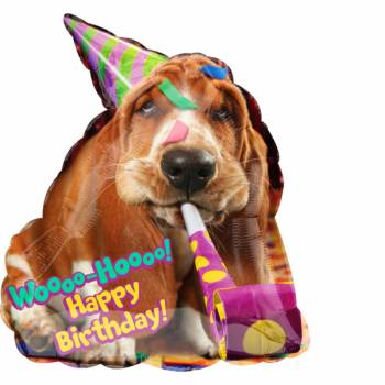 Ballon hélium birthday basset