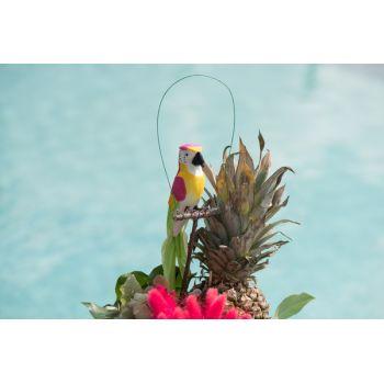 Perroquet sur perchoir rose